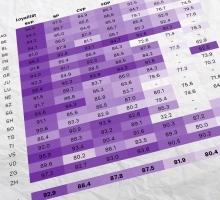 Panaschierstatistik: Kaum veränderte SVP-Listen