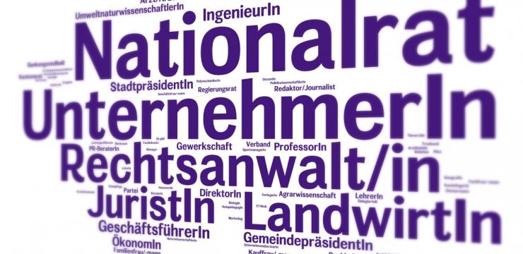 Die Berufe im neuen Nationalrat – Viele Selbständige und Vollzeitpolitiker